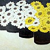 Yellow and White Gerberas