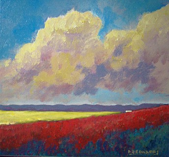 Poppies and Canola
